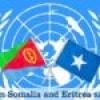 UN lifts sanctions on Eritrea, keeps arms embargo on Somalia