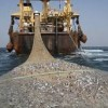 China-Somalia fishing deal may revive sea piracy