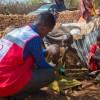 Turkish Red Crescent mobilizes for unprecedented famine threat in Somalia